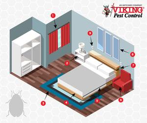 Bed-Bug-vector-art-2