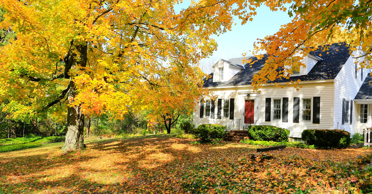 what pests are active during the fall